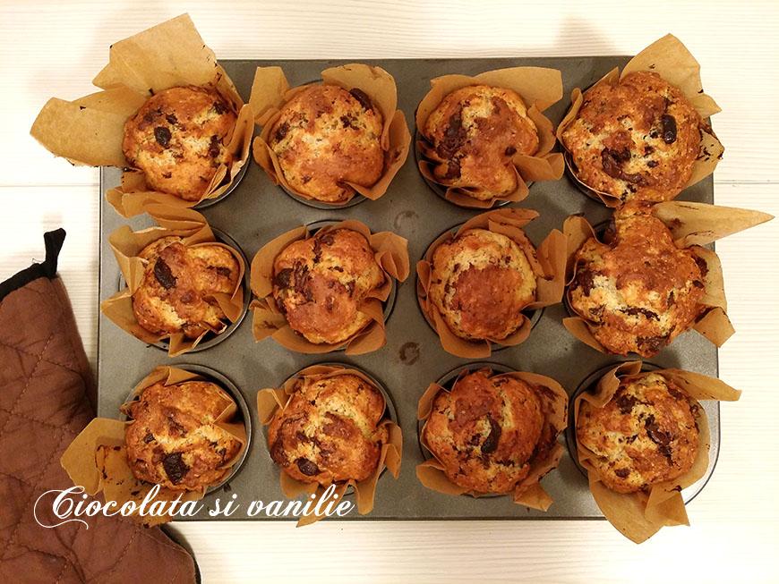 Muffins ciocolatoși