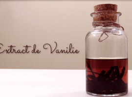 extract de vanilie