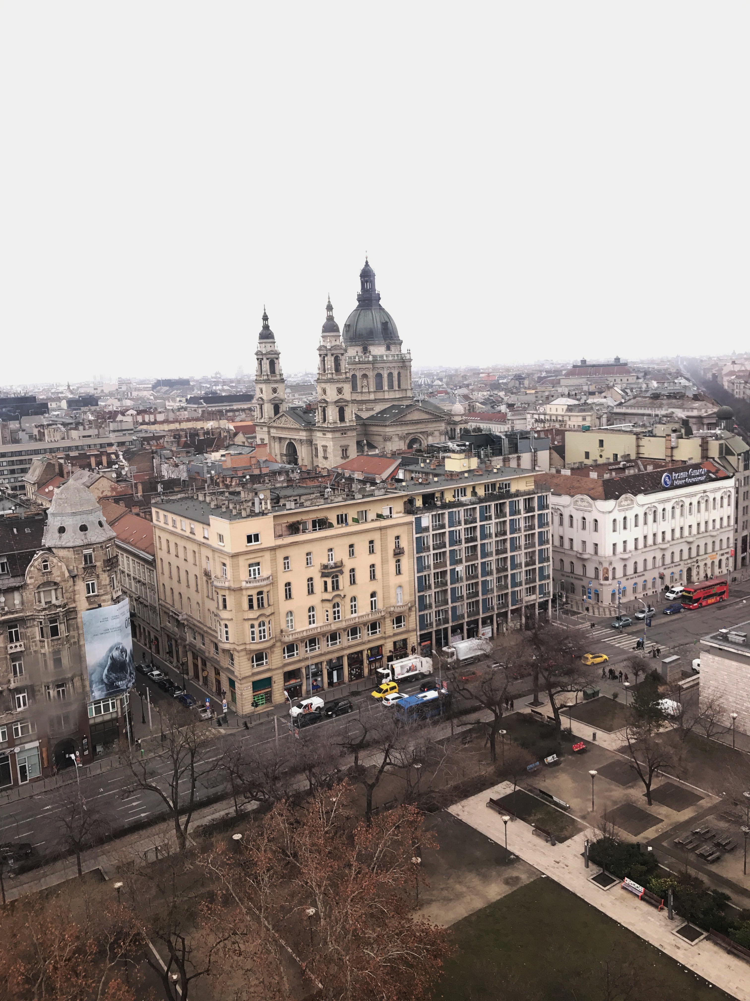 Budapesta_vedere de sus