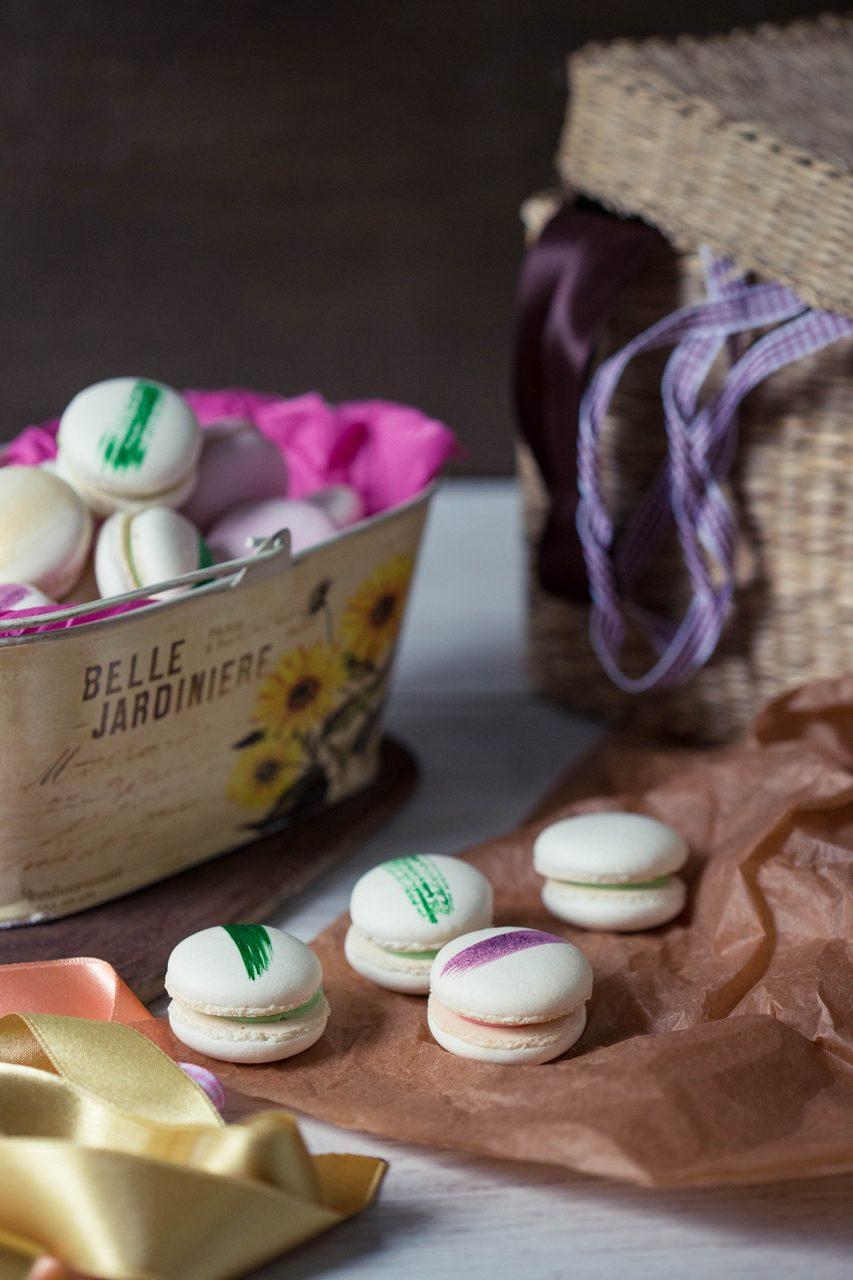 macarons albi