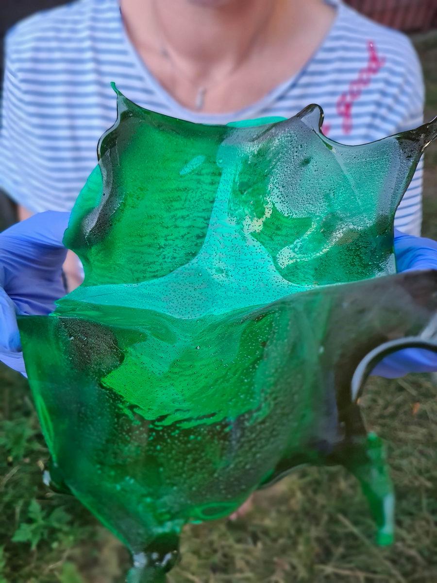 decor verde din zahar isomalt